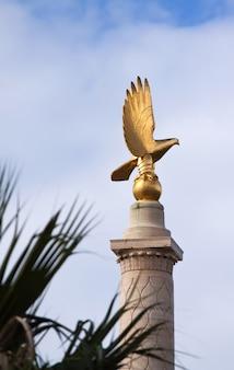 Falco maltese