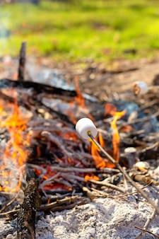 Falò da campeggio, friggendo marshmallow sul rogo