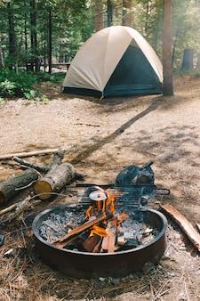Falò e un campo in una foresta allestita da escursionisti