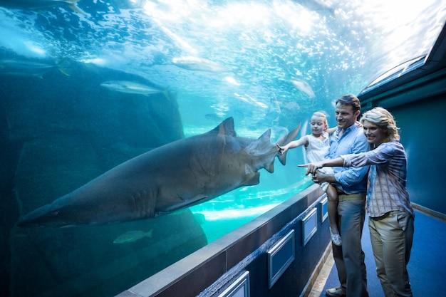 Famiglia che punta uno squalo in un carro armato
