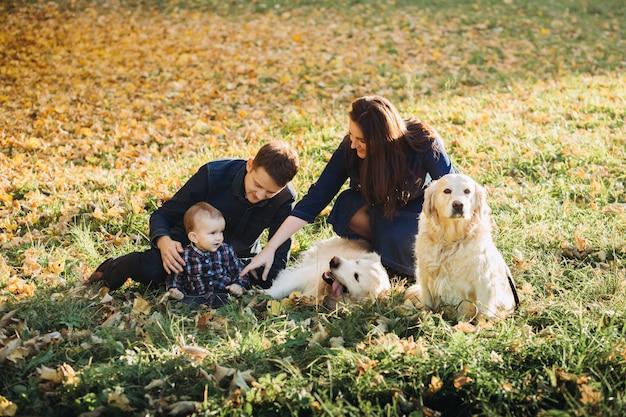 Famiglia con un bambino e due golden retriever in un parco di autunno