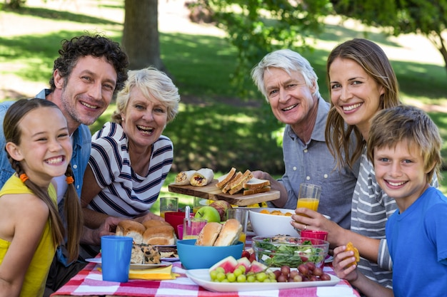 Famiglia fare un picnic
