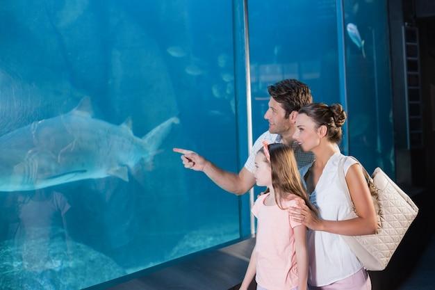 Famiglia felice guardando serbatoio di pesce