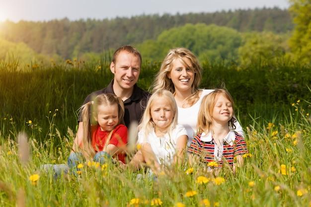 Famiglia felice in estate sul prato