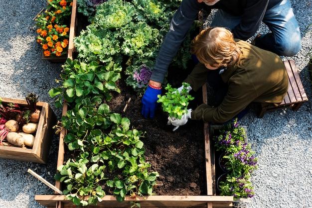 Famiglia raccolta ortaggi dal giardino del cortile
