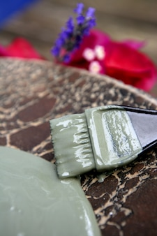 Fangoterapia naturale all'argilla verde per la maschera della pelle