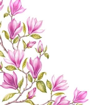 Fantastica cornice di magnolia.