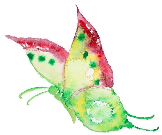 Farfalla disegnata a mano dell'acquerello astratto