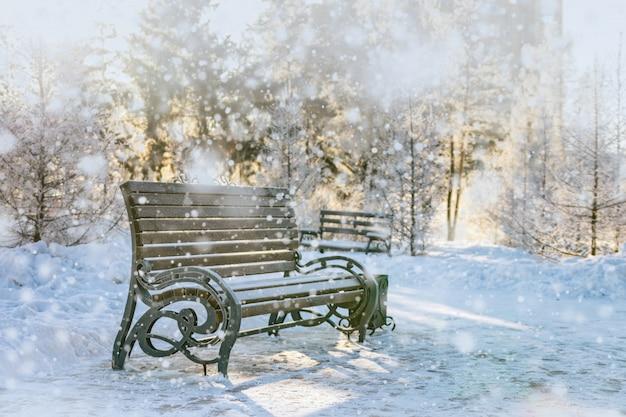 Fata scena invernale nel parco.