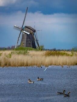 Fattoria di energia sostenibile delle turbine eoliche