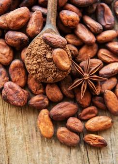 Fave di cacao e cacao in polvere crude