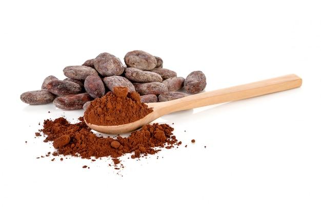 Fave di cacao e polvere di cacao isolate su bianco