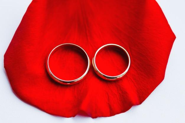 Fedi nuziali dorate sul petalo di rosa rossa