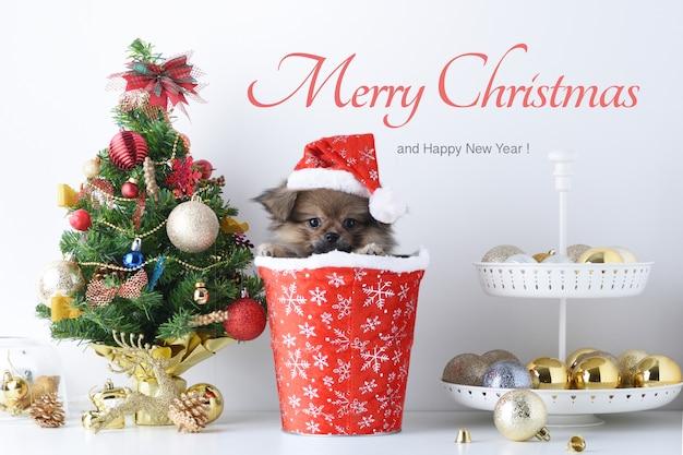 Felice anno nuovo, natale, cane in cappello di babbo natale, palle celebration e altra decorazione