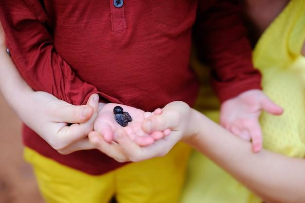 Felice femmina agricoltore e il suo piccolo aiutante che lavora in uliveto in italia.