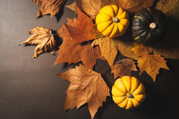 Felice giorno del ringraziamento con zucca e foglie di acero