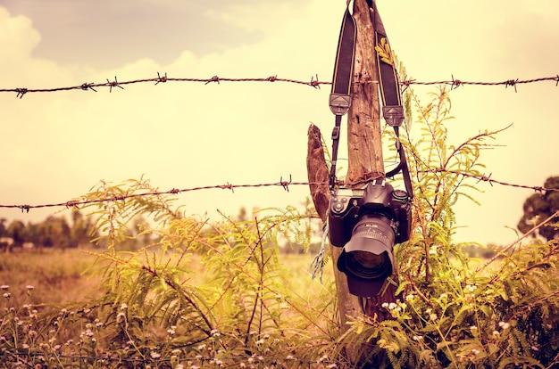 Fence nature hanging hanging camera