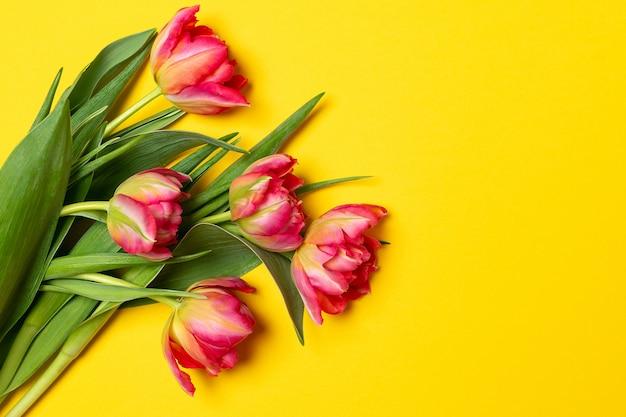Festa della mamma delle donne di san valentino 8 marzo tulipani rosa della primavera su giallo