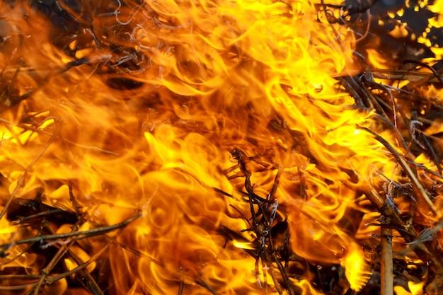 Fiamma e fumo del fuoco residuo dell'ustione del primo piano