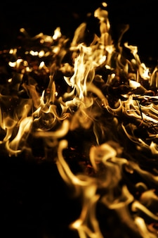 Fiamme del fuoco su sfondo nero