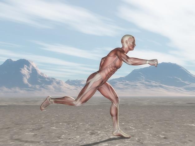 Figura maschio 3d con mappa muscolare in esecuzione nel paesaggio