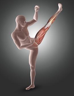Figura maschio 3d nella posa di kick boxing con i muscoli delle gambe evidenziati
