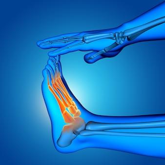 Figura medica maschio 3d con la fine in su del piede con le ossa evidenziate