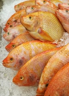 Fila di ruby fishes tailandese cruda fresca su ghiaccio al mercato
