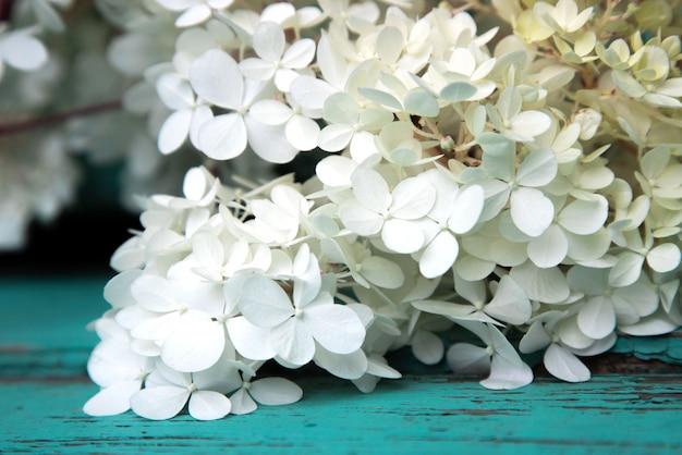 Filiale di fioritura del primo piano di spirea su una superficie di vecchie schede del turchese.