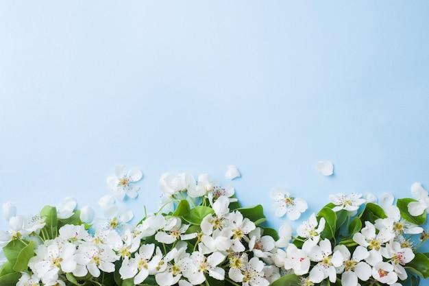 Filiale di fioritura primaverile su sfondo blu