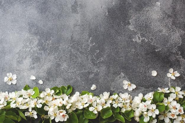 Filiale di fioritura primaverile su sfondo grigio cemento
