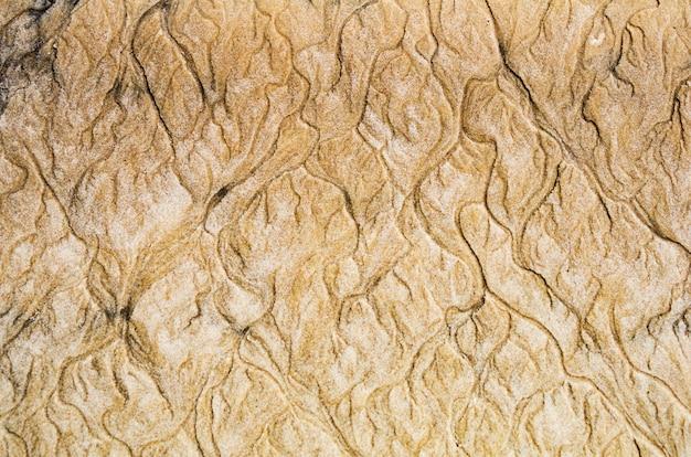 Filigrane sulla spiaggia di sabbia con colori dorati, trame. astratto. fotografia macro