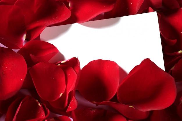 Fine di macro della rosa rossa su con la nota in bianco