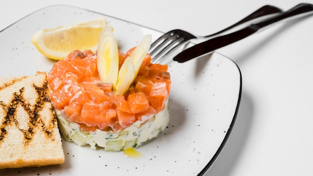 Fine gastronomica del piatto di color salmone in su