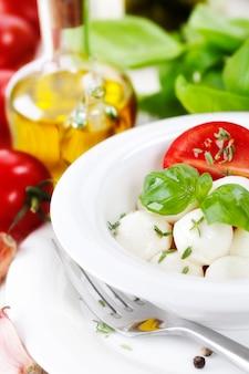 Fine italiana della mozzarella del pomodoro in su