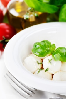 Fine italiana della mozzarella in su