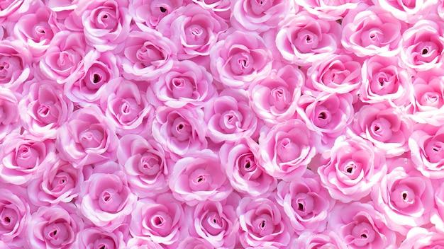 Fine rosa della foresta della primavera sui bei fiori fondo rosa