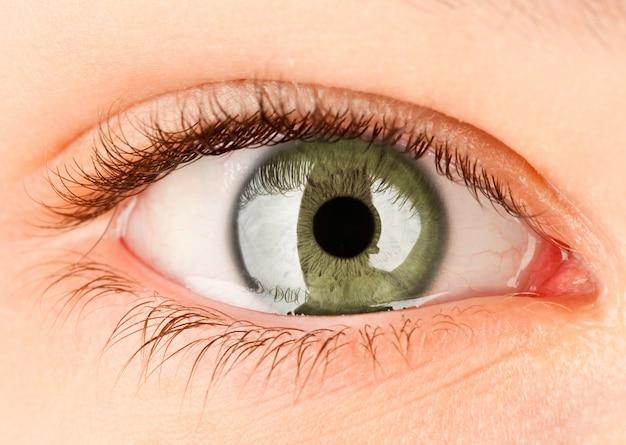 Fine verde umana dell'occhio femminile in su