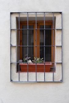 Finestra con barre e vaso con piante