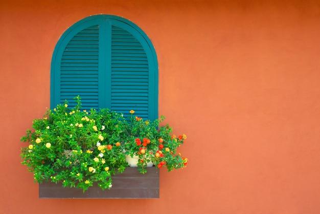 Finestra e vaso di fiori con parete dipinta di arancione in background