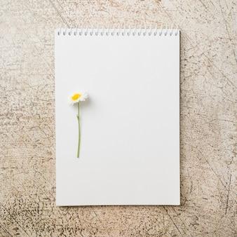 Fiore bianco sul blocco note a spirale della banca sul contesto del grunge