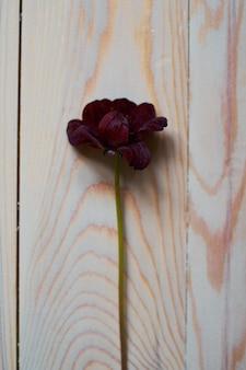 Fiore di borgogna su fondo in legno