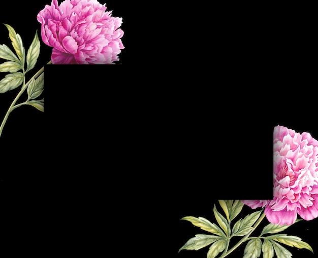 Fiore di peonia rosa disegno botanico dell'acquerello.