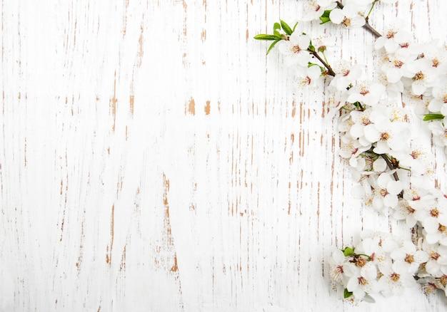 Fiore di primavera su fondo in legno