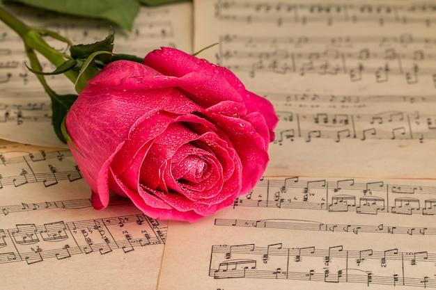 Fiore di rosa rossa e foglio di note musicali