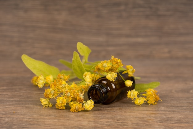 Fiore di tiglio con bottiglia di vetro marrone scuro. medicina alternativa o concetto di guarigione popolare.
