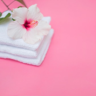 Fiore e asciugamani bianchi dell'ibisco su fondo rosa