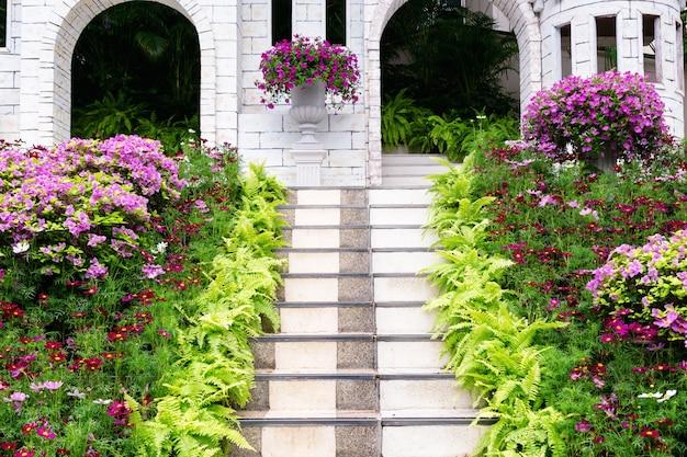 Fiore e piante decorative su scala
