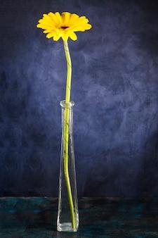 Fiore fresco in vaso stretto