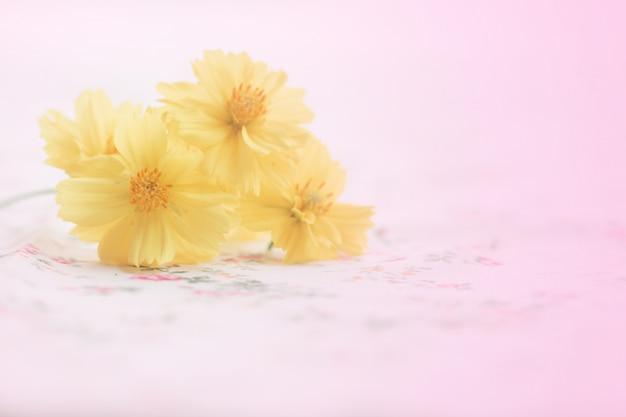 Fiore giallo dell'universo sulla stagione naturale di concetto antinfortunistico della molla del fondo dell'annata